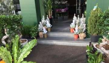 FlowerBox Gallery Maroc